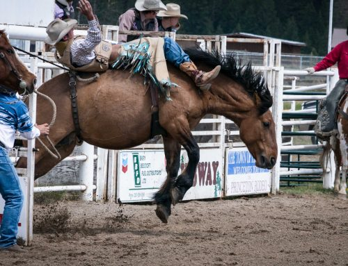 B.C. Hardwood is a proud sponsor of the Stan Thompson Memorial Rodeo June 8th and 9th 2019 at the Princeton Rodeo Grounds